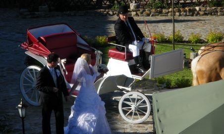 Sale weselne - Impresja Krasiczyn - 51a9021e2ce47bryczka4.jpg - SalaDlaCiebie.pl