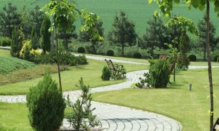 Sale weselne - Centrum Hotelowo - Konferencyjne Witek - 54afc77c67058dscf0099_small.JPG - SalaDlaCiebie.pl