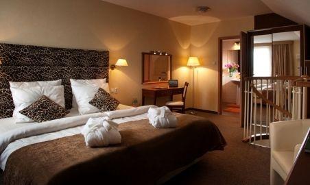 Sale weselne - Centrum Hotelowo - Konferencyjne Witek - 54afc9bc7274ddsc_5727x_small.jpg - SalaDlaCiebie.pl