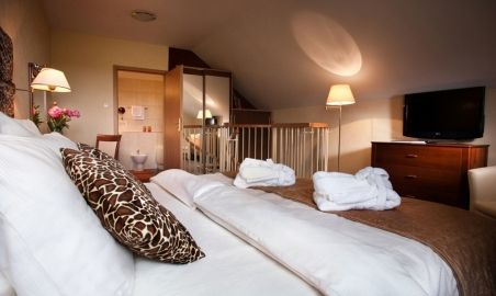 Sale weselne - Centrum Hotelowo - Konferencyjne Witek - 54afc9c33bd4adsc_5754x_small.jpg - SalaDlaCiebie.pl