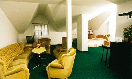Sale weselne - Hotel Zbyszko w Nowogrodzie - 1253615124apartament_zbyszko.jpg - SalaDlaCiebie.pl