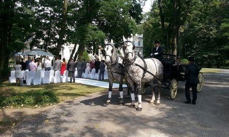 Sale weselne - Pałac Chojnata - 583ff3b9de37cpalacchojnatawesele7.jpg - SalaDlaCiebie.pl