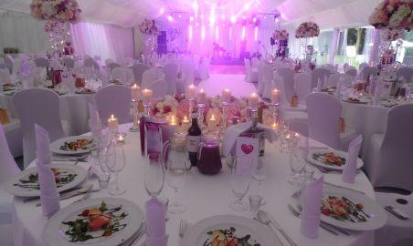 Sale weselne - Pałac Chojnata - 583ff4127648dsam_1067.jpg - SalaDlaCiebie.pl