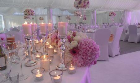 Sale weselne - Pałac Chojnata - 583ff41e4c46esam_1070.jpg - SalaDlaCiebie.pl