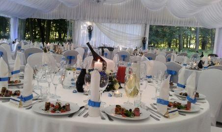 Sale weselne - Pałac Chojnata - 583ff43b52ba7zdjecie0045.jpg - SalaDlaCiebie.pl