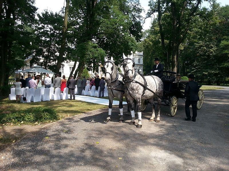Sale weselne - Pałac Chojnata - SalaDlaCiebie.com - 23
