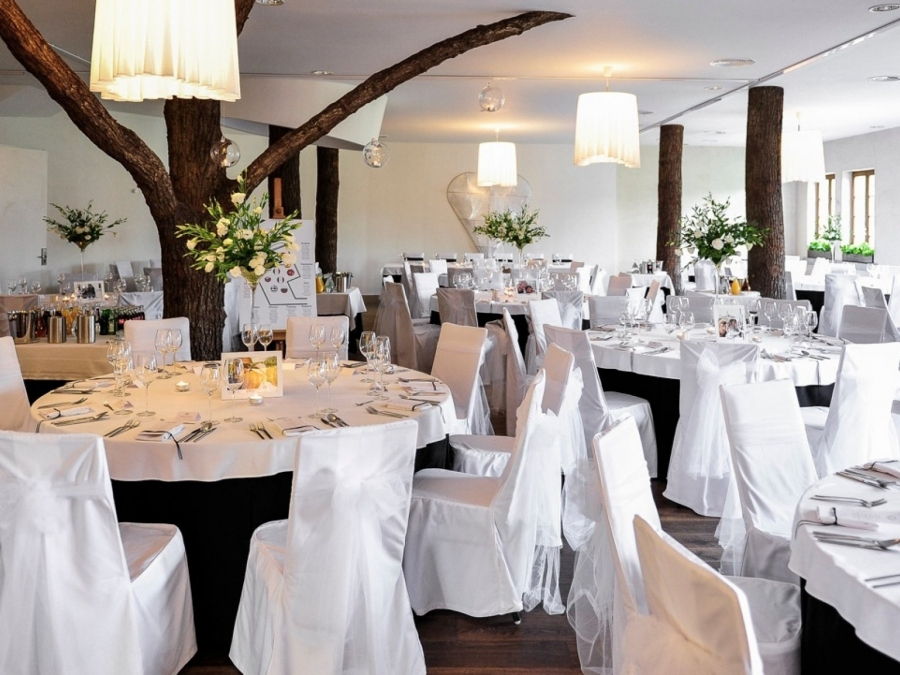Sale weselne - HOT_elarnia Hotel & SPA - SalaDlaCiebie.com - 1