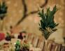 Sala weselna Enigma - Zdjęcie 10
