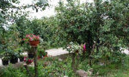 Sale weselne - Dom Weselny - 1236847609016s.jpg - SalaDlaCiebie.pl
