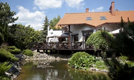 Sale weselne - Czarny Kos - 5a93e6acc39464d9296f700ee5dccc4a1f521094bec6b.jpg - www.SalaDlaCiebie.com