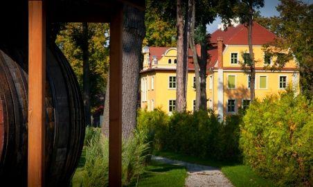 Sale weselne - Pałac Wiechlice - SalaDlaCiebie.com - 6