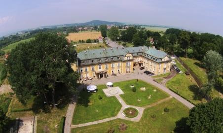 Sale weselne - Pałac Żelazno - 5b3a0ef4c2654zdrona11.jpg - www.SalaDlaCiebie.com