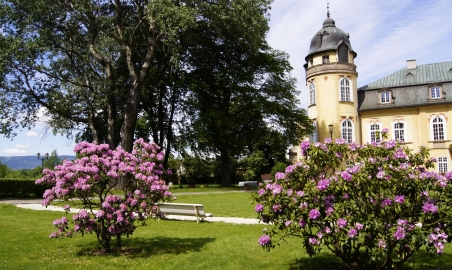 Sale weselne - Pałac Żelazno - 5b3a0f6d21293park11.jpg - www.SalaDlaCiebie.com