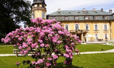 Sale weselne - Pałac Żelazno - 5b3a0f72ce65fpark6.jpg - www.SalaDlaCiebie.com