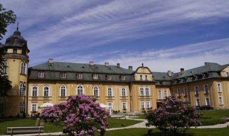 Sale weselne - Pałac Żelazno - 5b3a135029af9a1.jpg - www.SalaDlaCiebie.com