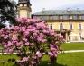 Pałac Żelazno - Zdjęcie 15