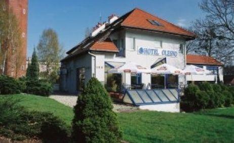 Sale weselne - Hotel Olesno - 516a90a2a27553742052.jpg - SalaDlaCiebie.com