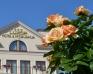 Sale weselne - Hotel Luxor  - SalaDlaCiebie.com - 7