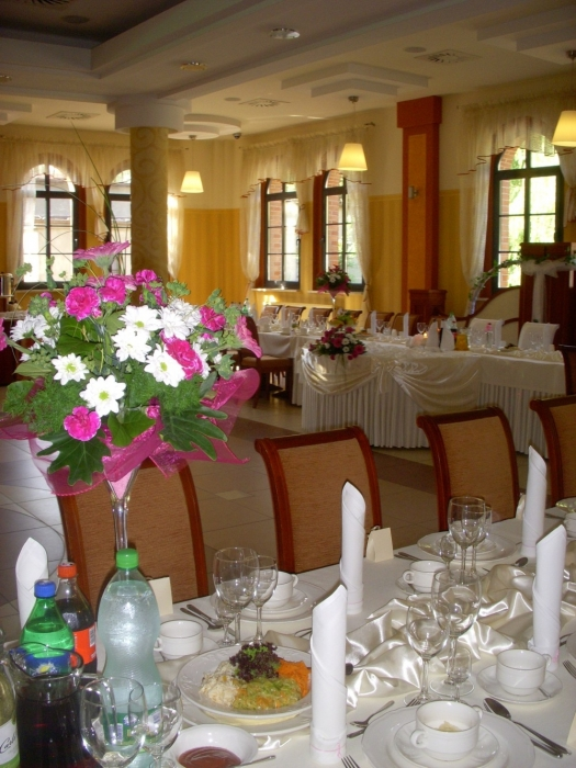 Sale weselne - Hotel Nest - SalaDlaCiebie.com - 7