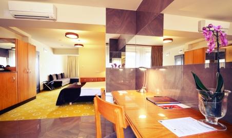 Sale weselne - AGIT Hotel Congress & SPA - 5afd8a0513caefotoramio_1.jpg - www.SalaDlaCiebie.com