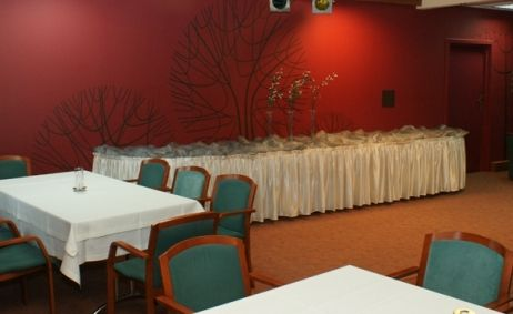 Sale weselne - Hotel Rychło*** - 53fd964dc0c8510.jpg - SalaDlaCiebie.pl