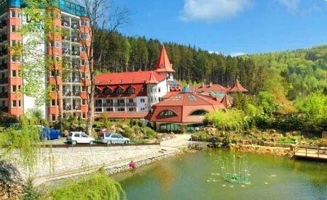 Sale weselne - Hotel Las**** - 54007e9b2d968header.jpg - SalaDlaCiebie.pl