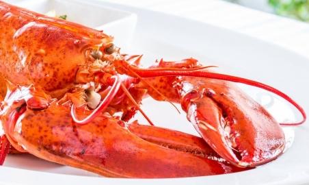 Sale weselne - Villa Bianco steak & lobster house - 5c12bbf2301d610256885_790855640924848_4789041596144296459_n.jpg - www.SalaDlaCiebie.com