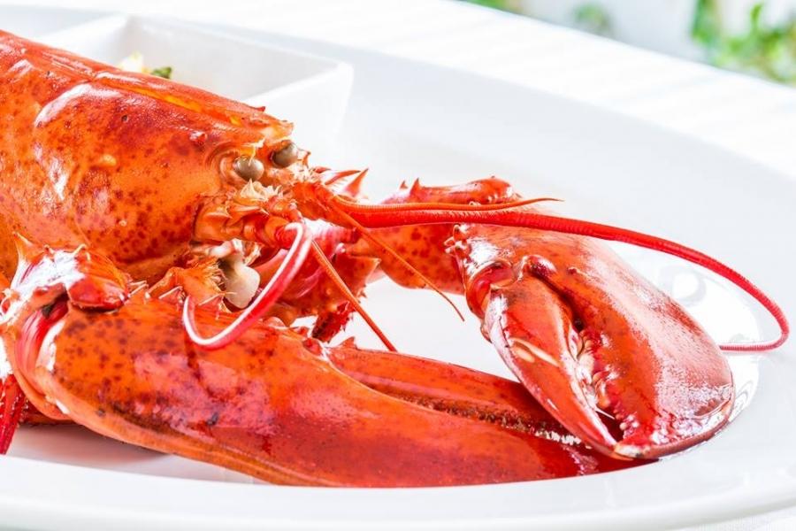 Sale weselne - Villa Bianco steak & lobster house - SalaDlaCiebie.com - 12