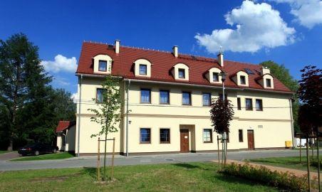 Sale weselne - Modrzewiowy Dwór - Hotel & Restauracja - 5698fb7eba0651c.jpg - SalaDlaCiebie.pl