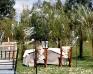 Wierzbowe Ranczo - Zdjęcie 9