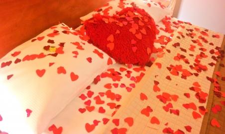 Sale weselne - Hotel - Restauracja ASTRA*** - 5ca4b6ea56b14sam_5254.JPG - www.SalaDlaCiebie.com
