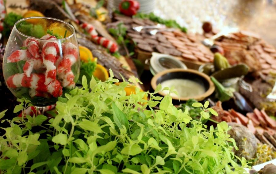 Sale weselne - Hotel Jan Sander - SalaDlaCiebie.com - 9