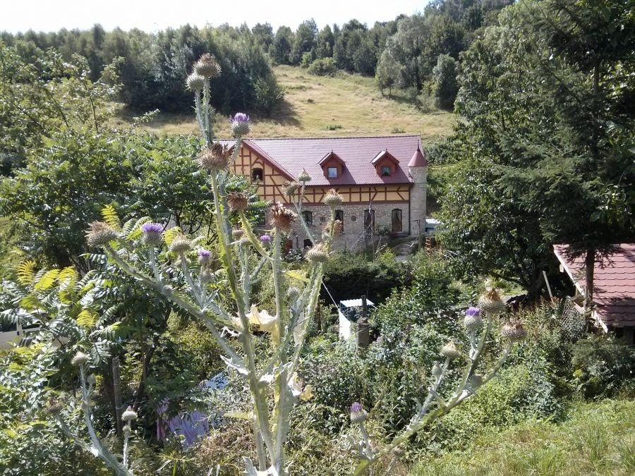 Sale weselne - Zbójna Debra - SalaDlaCiebie.com - 5