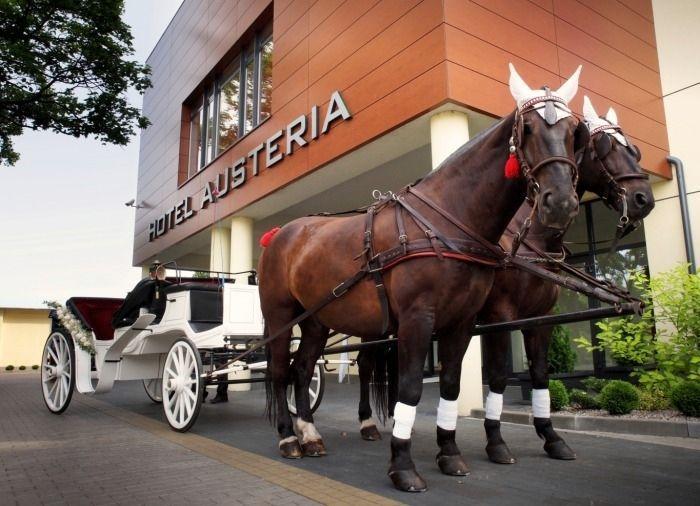 Sale weselne - Hotel Restauracja Austeria*** Conference & SPA - SalaDlaCiebie.com - 32