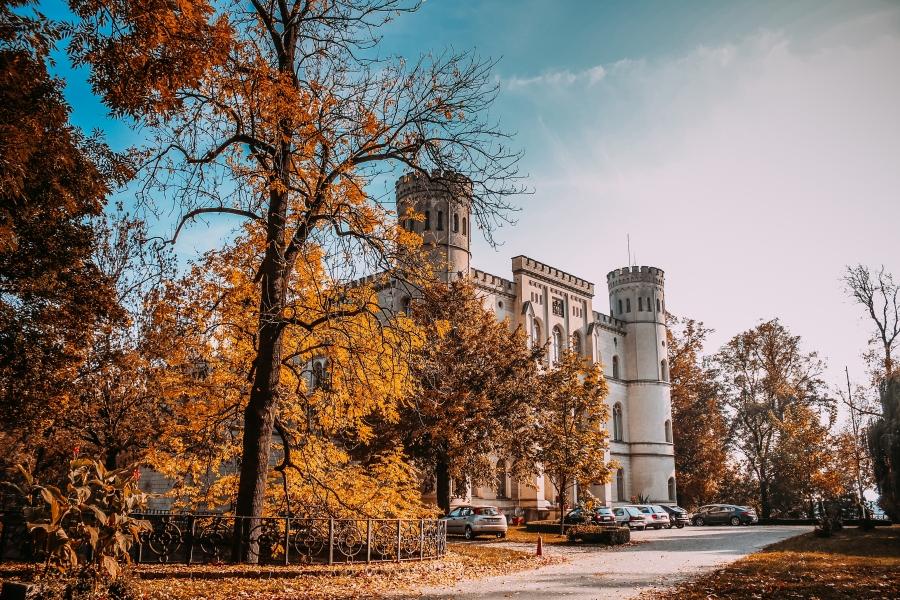 Sale weselne - Ośrodek Integracji Europejskiej w Rokosowie - SalaDlaCiebie.com - 1