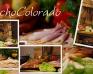 Agroturystyka Wielkopolska Rancho Colorado - Zdjęcie 6