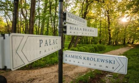 Sale weselne - Pałac Mała Wieś - SalaDlaCiebie.com - 11