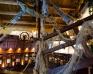 Sale weselne - Hotel Ognisty Ptak - SalaDlaCiebie.com - 28