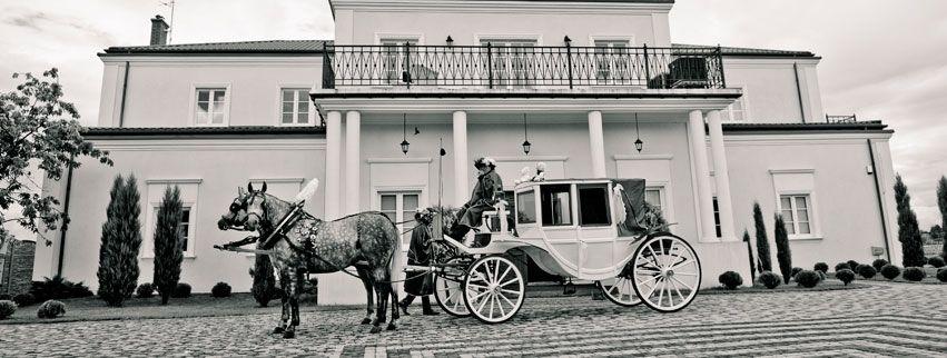 Sale weselne - Lawendowy Pałacyk - SalaDlaCiebie.com - 35