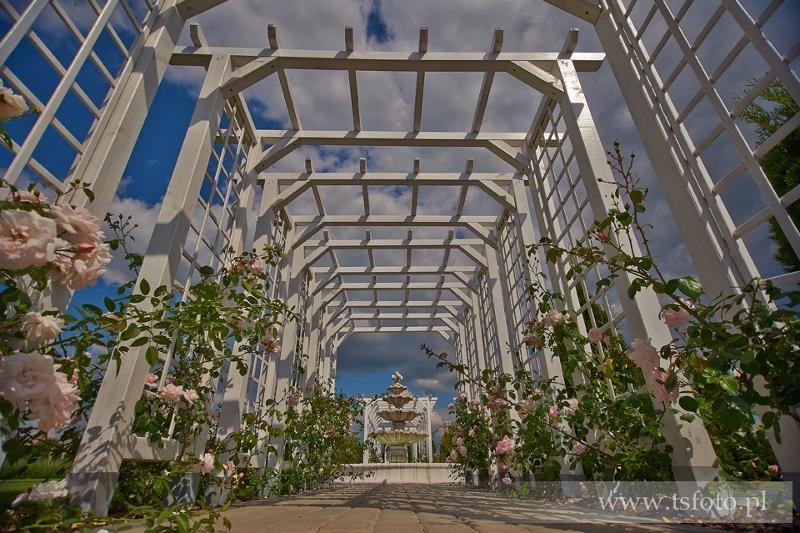 Sale weselne - Lawendowy Pałacyk - SalaDlaCiebie.com - 4